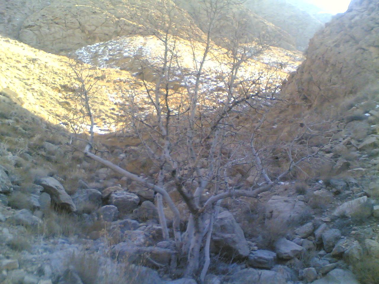 دزیان- در پی غار ملاحدان
